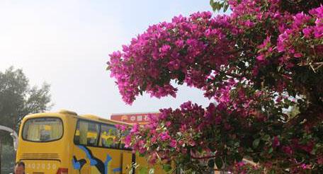 Ngày cuối cùng của đoàn ở đất Nam Ninh cùng chiếc xe quen thuộc